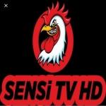 Sensi Tv Film